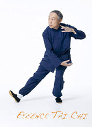 Owen Performing Essence Tai Chi