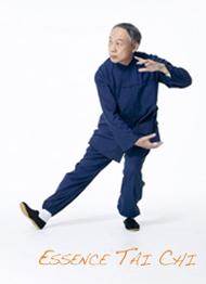 Owen Performing Essence Tai Chi